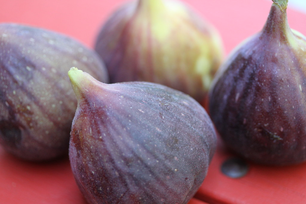California figs, the richest in flavor. Perfect ingredient for a fantastic gelato flavor.